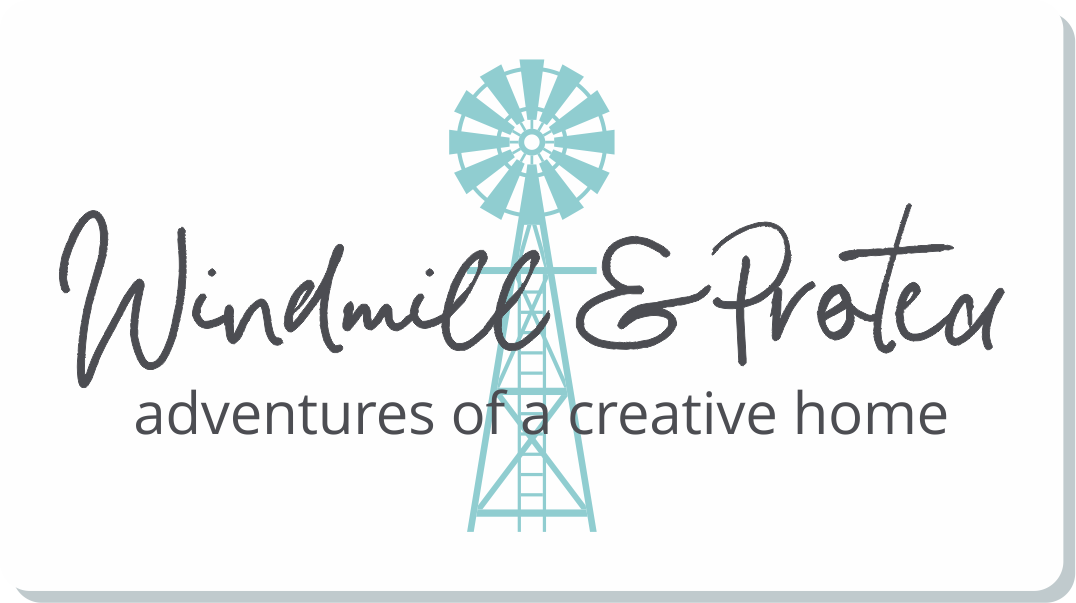 Windmill & Protea | adventures of a creative home