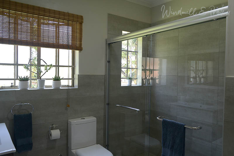 Family Bathroom Remodel Reveal - Shower | www.windmillprotea.com