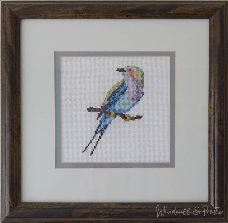 Beautiful Birds Cross Stitch Designs and Free Patterns - Lilac Breasted Roller | www.windmillprotea.com