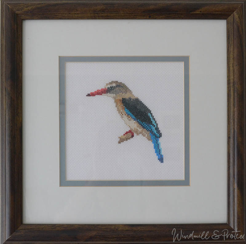 Beautiful Birds Cross Stitch Designs and Free Patterns - Brown Hooded Kingfisher | www.windmillprotea.com