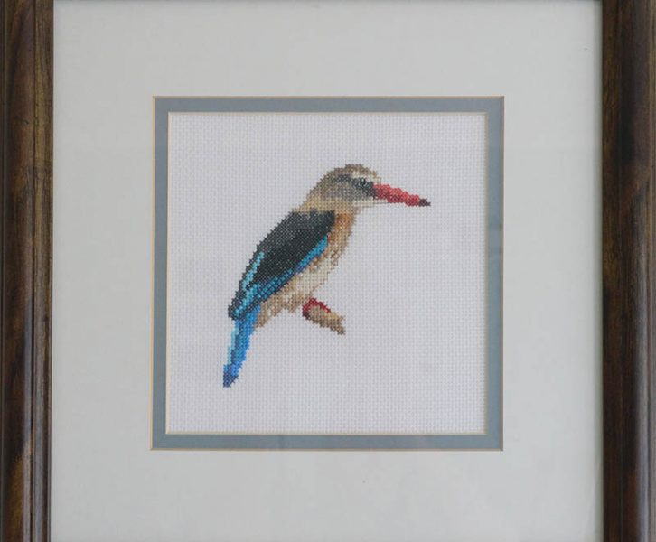 Beautiful Birds Cross Stitch Designs and Free Patterns | www.windmillprotea.com