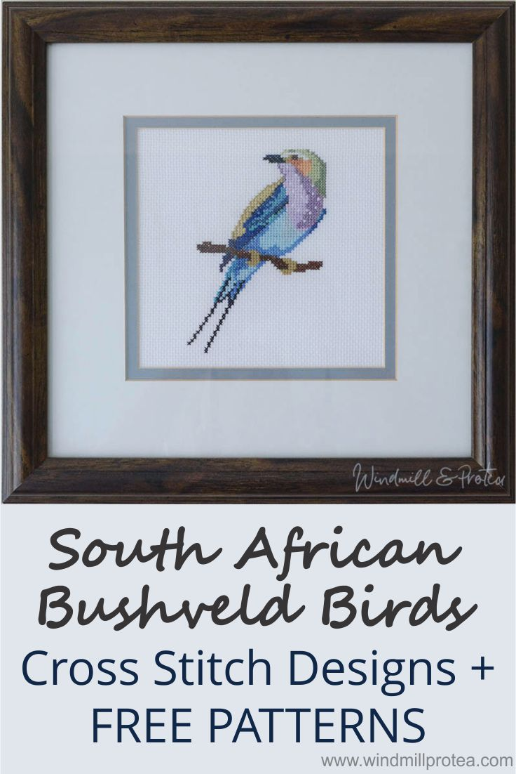 Free cross stitch patterns for South African Bushveld Birds