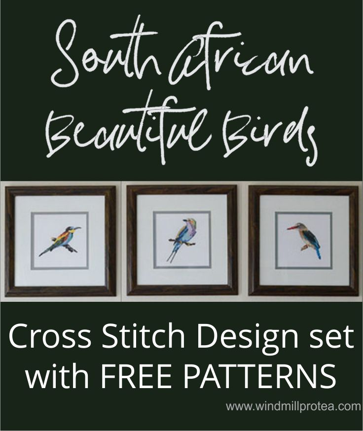 Beautiful South African Bird Cross Stitch Designs with Free Patterns