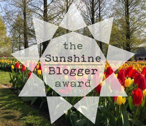 Sunshine Blogger Award   www.windmillprotea.com