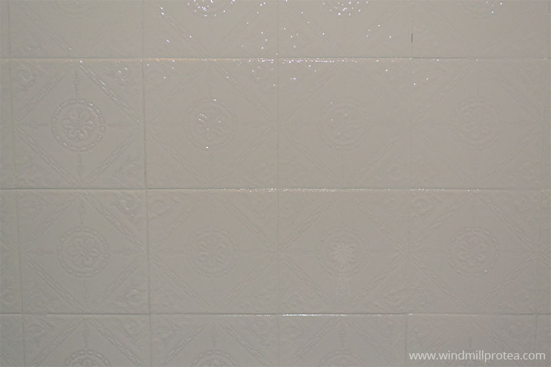 Wall tiles painted | www.windmillprotea.com