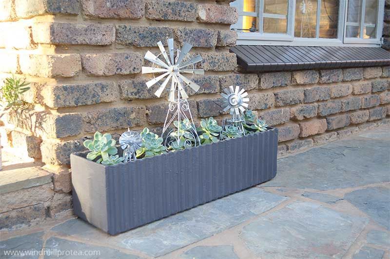 Outdoor Planter After | www.windmillprotea.com