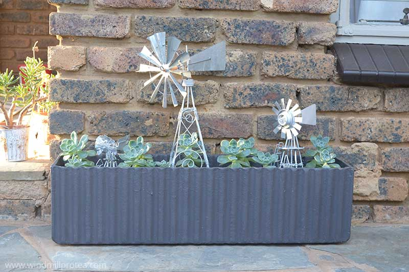 Beautiful Outdoor Planter | www.windmillprotea.com