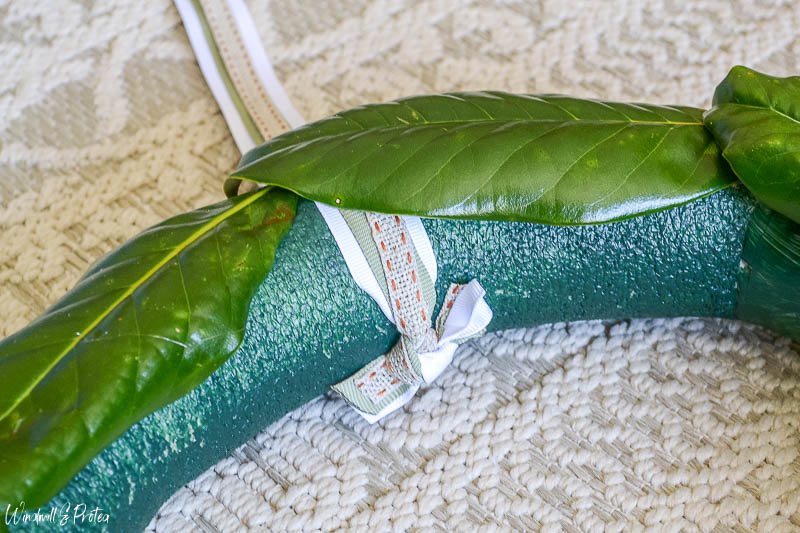 Attach large leaves first and add ribbon | www.windmillprotea.com